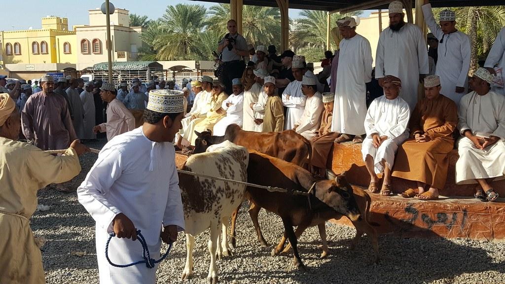 Jeden Freitag tummeln sich unzählige Einheimische auf dem Viehmarkt.