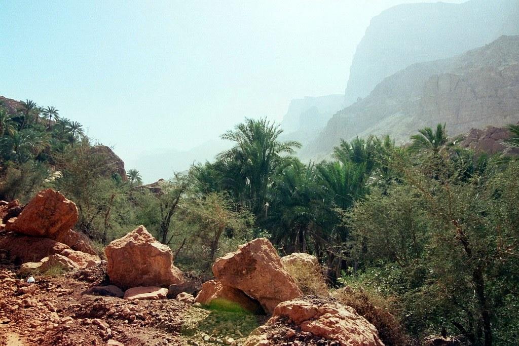 Umso weiter man in das Wadi fährt und dann bald auch wandert umso wilder wird die Natur.