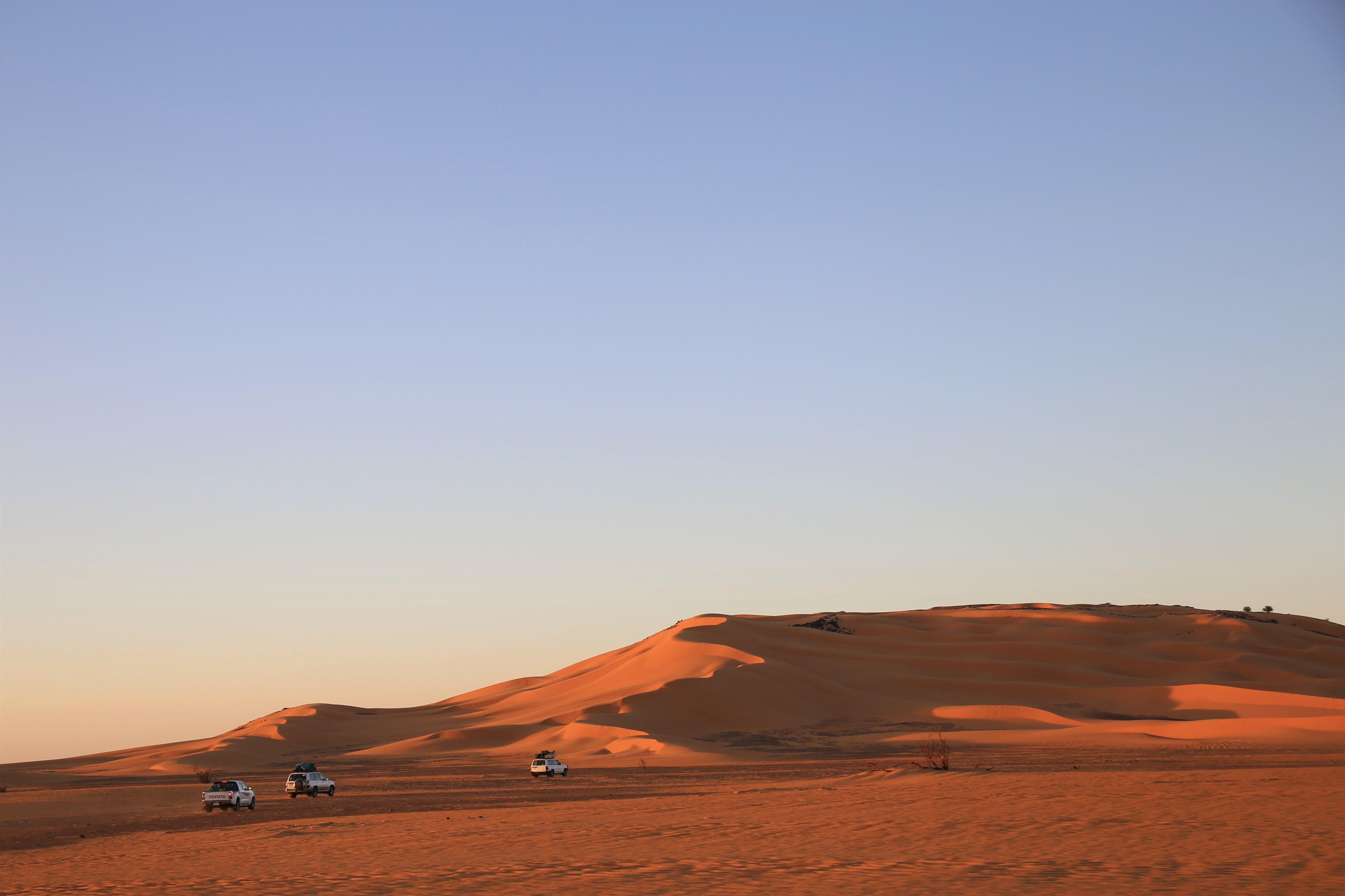 Sanddünen in der Abendsonne