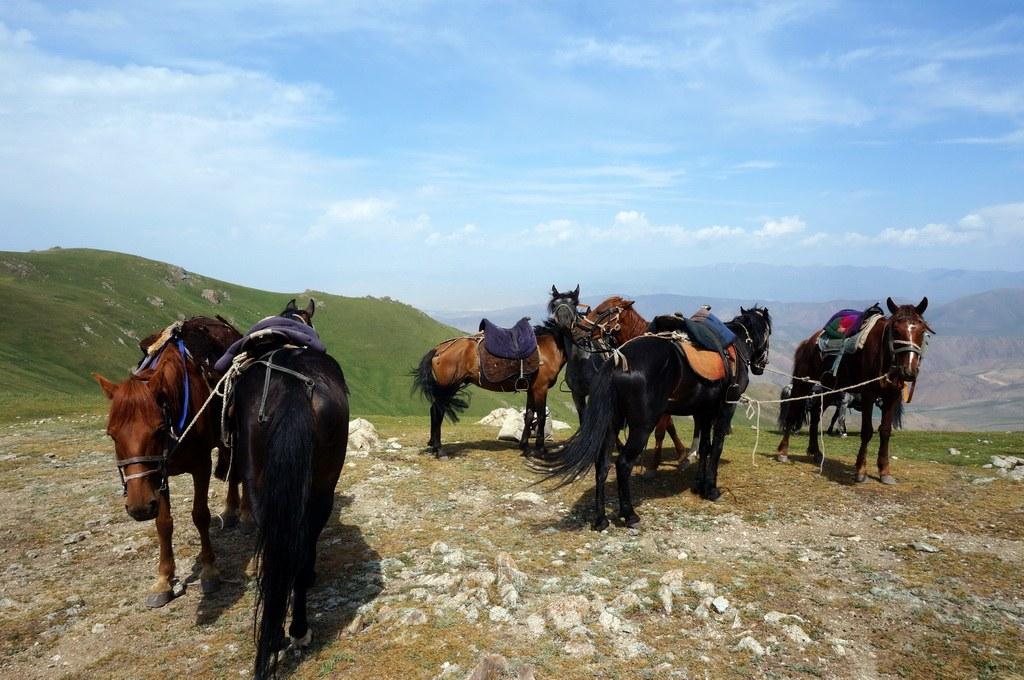 Pferdetrekking in Kirgistan