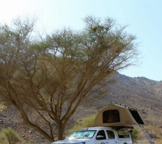 Nach einem ereignisreichen Tag freut man sich auf ein schattiges Plätzchen um sein Dachzelt aufzubauen.