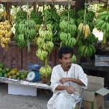 Frische Tropische Früchte direkt am Straßenrand.