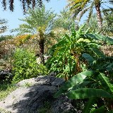 In vielen Bergdörfern des Landes pflanzen die Einheimischen noch eigenes Obst und Gemüse.