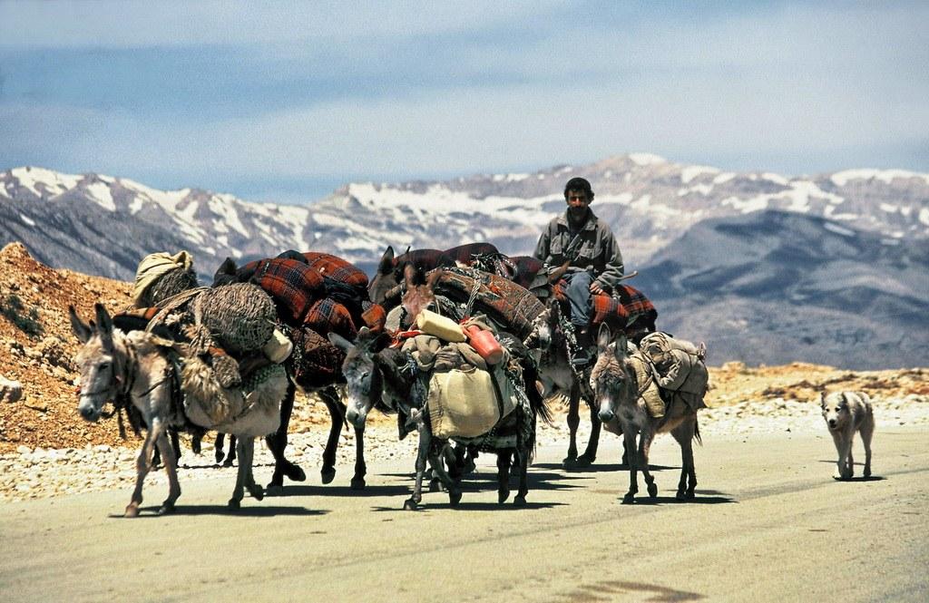 Je nach Jahreszeit suchen sich die Nomaden im Zagros ihre Bleibe