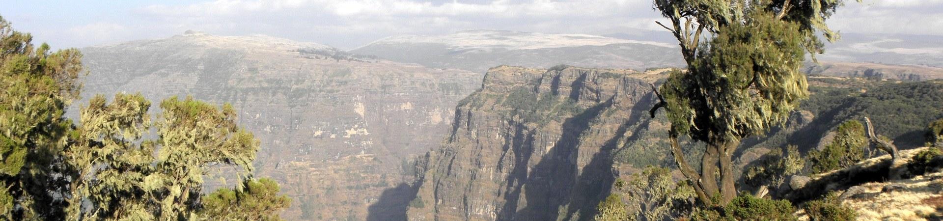 Canyons Header