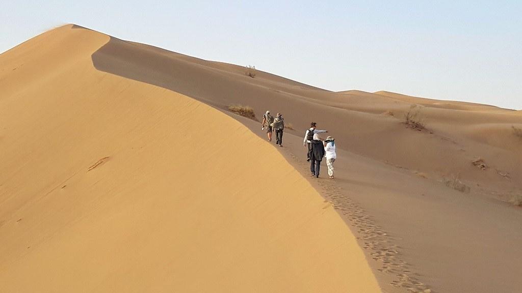Auf dem Dünenkamm wandern wir bis ganz nach oben