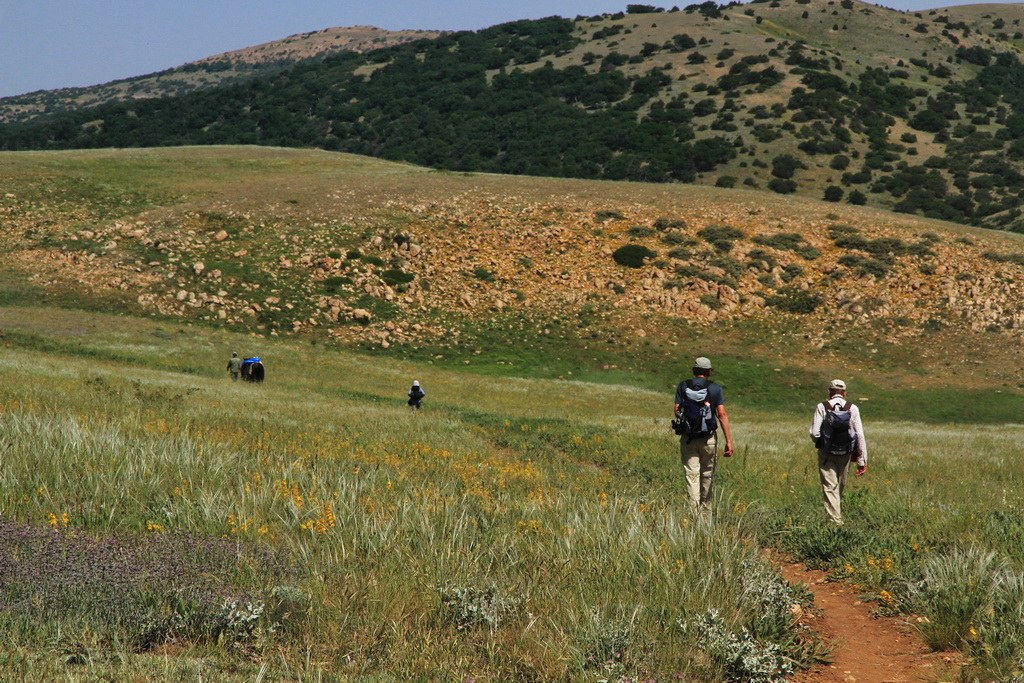 Wanderung durch den grünen Golestan Park