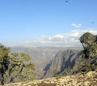 Canyons Liste