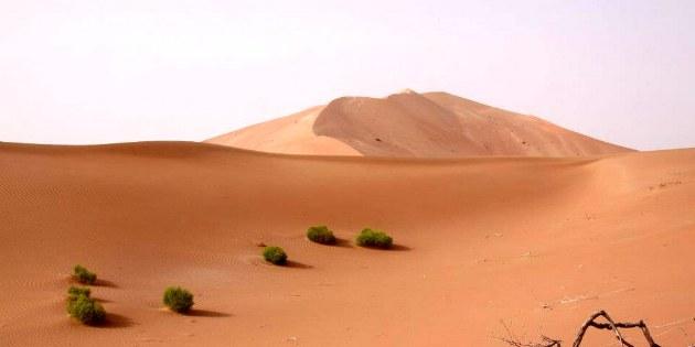 Der Besuch einer Wüste ist immer wieder ein besonderer Moment.