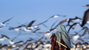 Frühmorgens kann man das Treiben der Fischer am Strand beobachten.