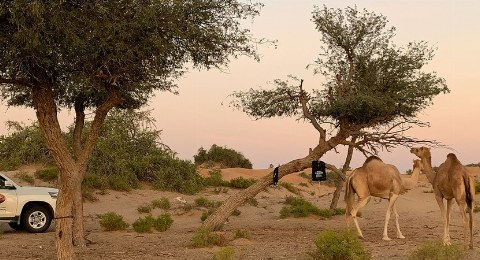 Oman mit dem Dachzelt bereisen