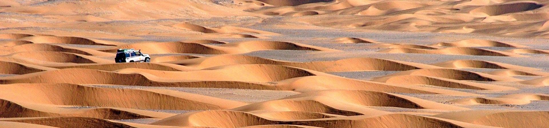 Fahrt durch dieWüste