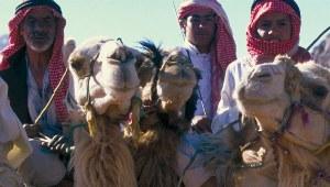 Jordanien: Bedu mit Kamelen im Wadi Rum