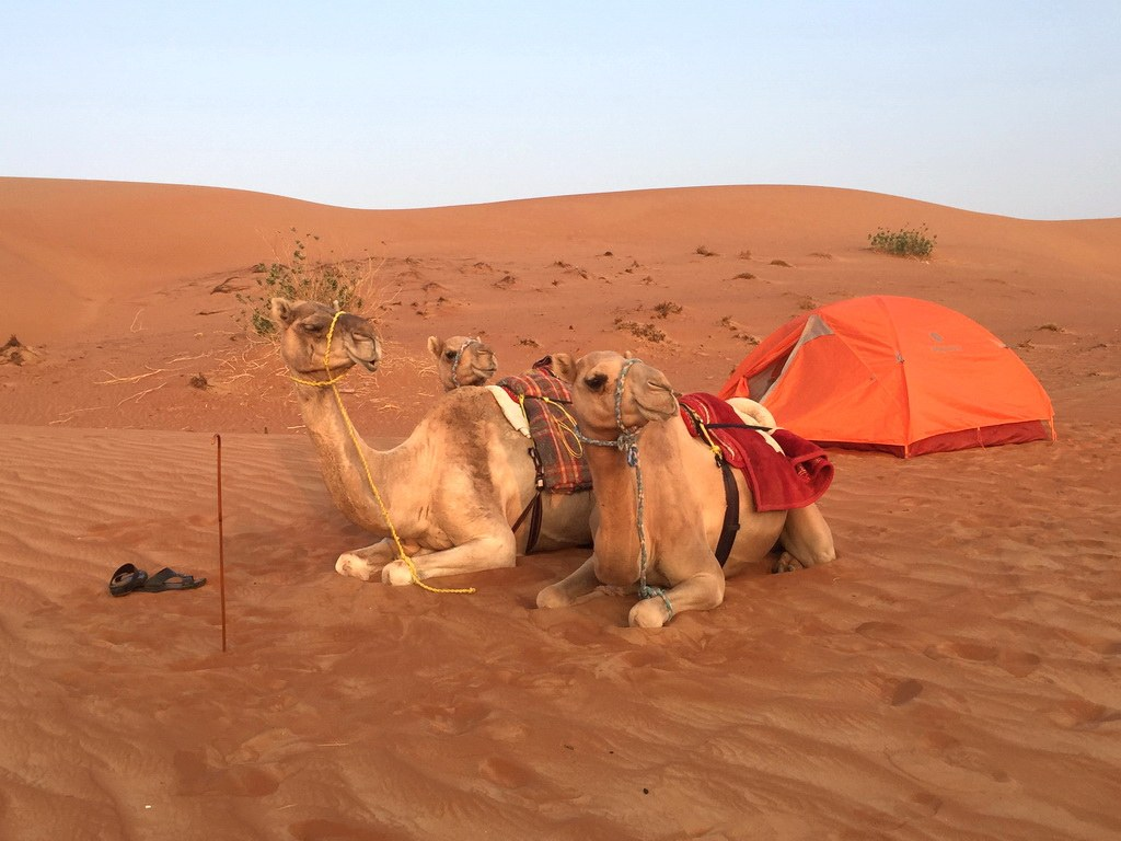 Oman Kameltrekking Morgenstimmung