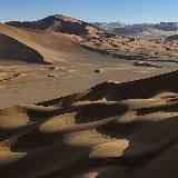 Oman Kameltrekking Rub al-Khali Wanderung