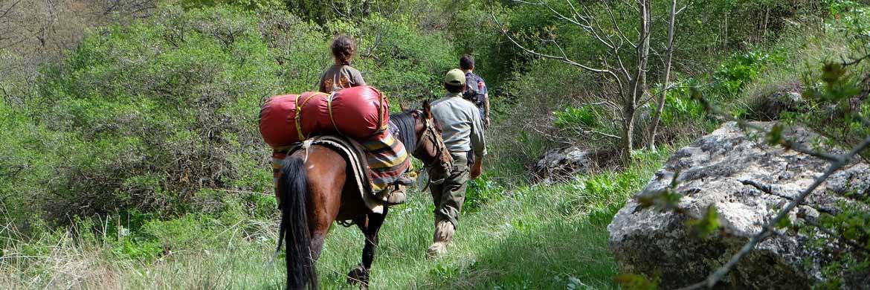 Trekking mit Pferden im Iran