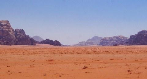 Natur in der Wadi-Rum